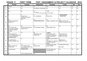 CBHS Grade 11 Tests Projects & Assignments for Term 1 of 2018